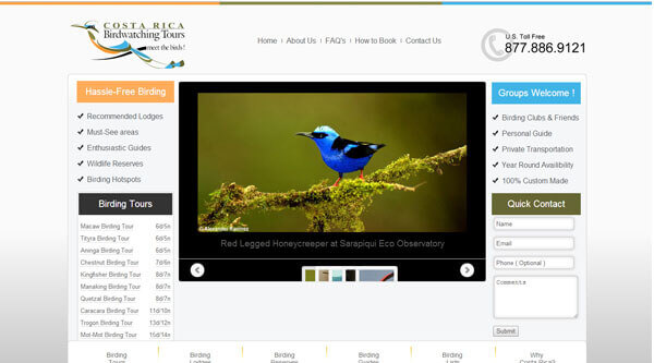 Costa Rica Bird Watching